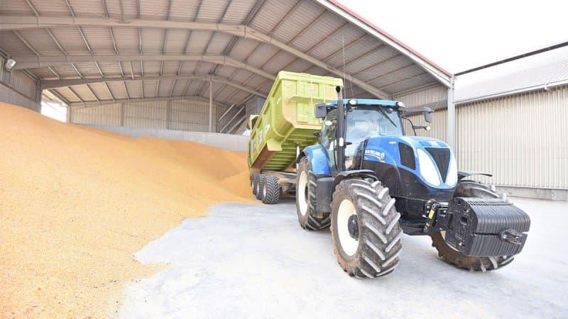 El maíz alcanza los 265 euros en una escalada sin precedentes